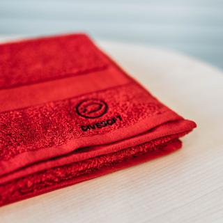 Divesoft Handtuch