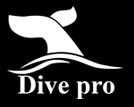 Dive Pro